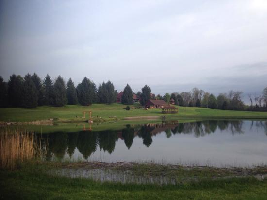 Hamilton, NY: Big trout in pond at peacefull pines bed and breakfast they will lend you a rod!beautifull quiet
