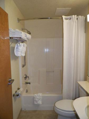 Microtel Inn & Suites by Wyndham Gulf Shores: Standard Bathroom
