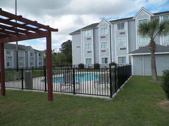 Microtel Inn & Suites by Wyndham Gulf Shores: Pool