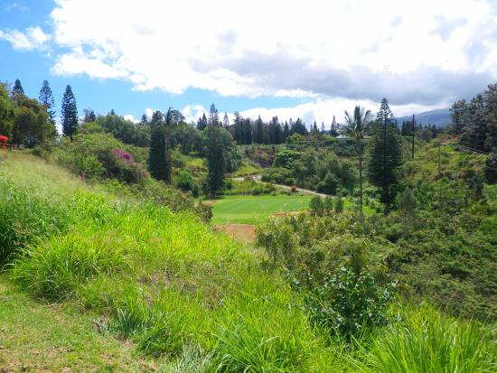 Pukalani, Hawái: A great approach to this green