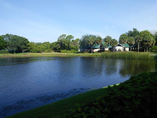 Inn at Pelican Bay: Lake
