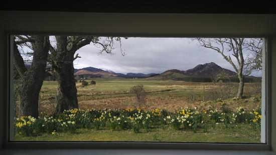 Flichity, UK: View from window of reception room