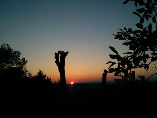 Ancora del Chianti Bed and Breakfast : Sunset, seen from the garden. Mountains at the horizon.