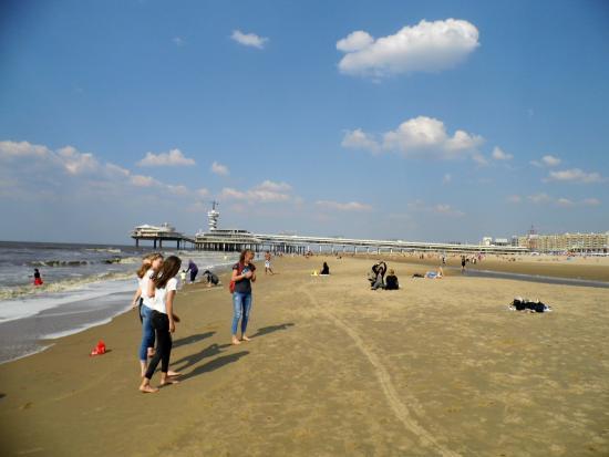 Hotel Mimosa: large sandy beach 5 min walk from hotel