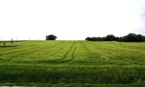 Naussannes, Francia: Open farmland