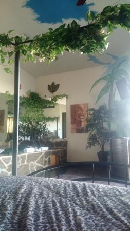 Hotel J Green Bay Foto