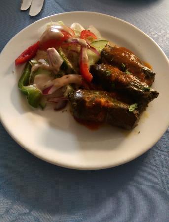 Rozafa Greek Restaurant: Dolmadakia