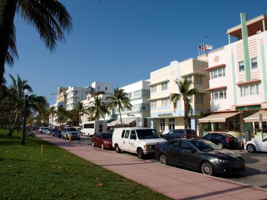 Hilton Grand Vacations At Mcalpin Ocean Plaza Drive In Miami Beach