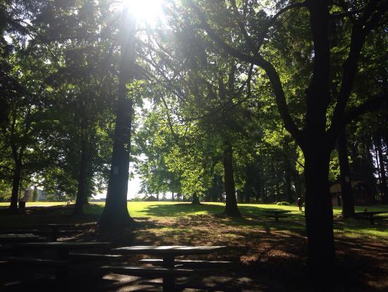 Creston Park