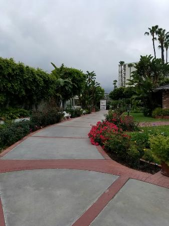 Town and Country Resort & Convention Center: 20160517_070439_large.jpg