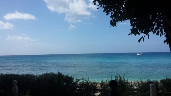 Holetown, Barbados: 20160207_125015_large.jpg