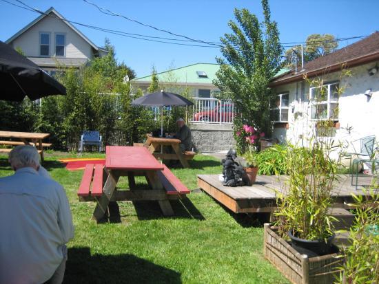 Tia's Tacos : Friendly back garden yard.