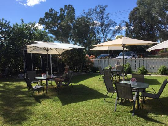 Barcaldine, Australia: Beautiful setting and very relaxed.  Scones with jam and cream were delicious and the coffee is