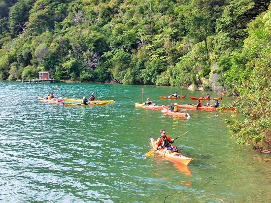 The Lodge at Te Rawa: Kayaking