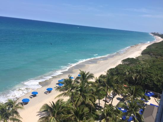 Jupiter Beach Resort Spa View