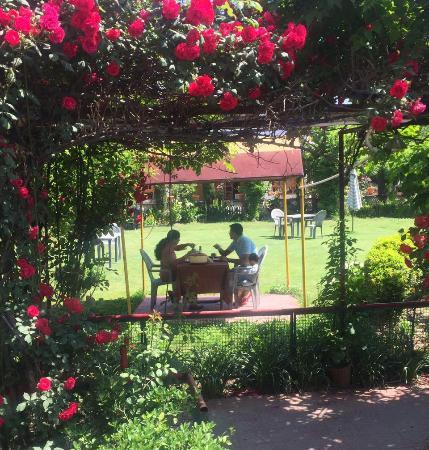 Nice Hotel Lake Resort Boutique: Garden View