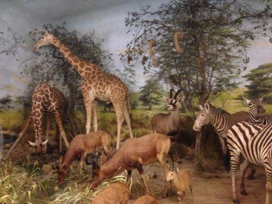 Birchington, UK: Part of the first diorama