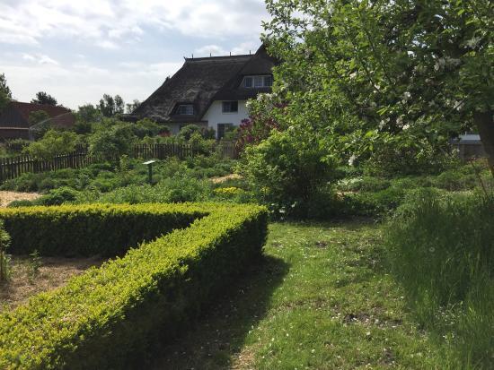 Wieck, Alemania: Der Garten