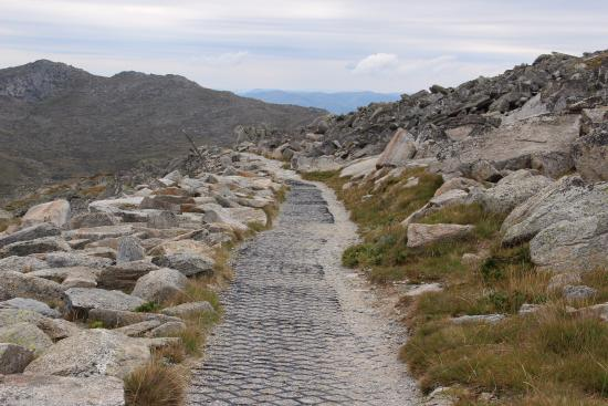Thredbo Village, Australia: On the way to the Mt.Kosciuszko