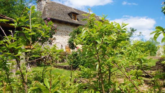 Mourjou, France : Vue de la Maison de la chataigne