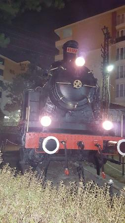 Malatya Province, تركيا: Dalları dolu çağla, herkes evine dağıla😊