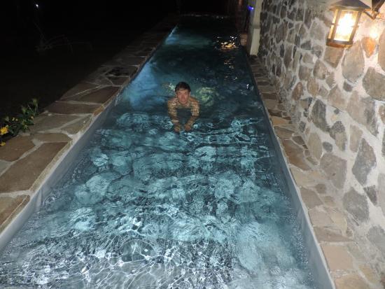 Habitation Getz : le bassin piscine