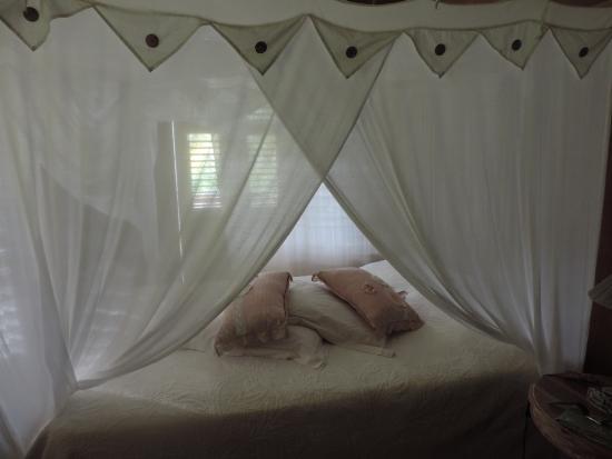 """Vieux-Habitants, Guadalupe: la chambre """"Bougainvillier"""""""