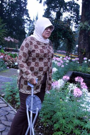 Западная Ява, Индонезия: Ibunda berjalan-jalan di kebun bunga