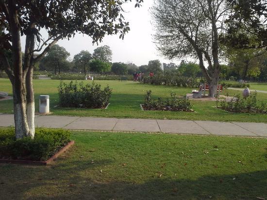 Chandigarh Rose Garden: Rose Garden Chandigarh