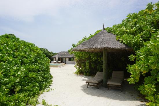 Dhonakulhi Island: Собственный пляж