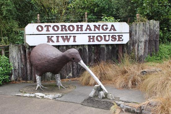 Otorohanga