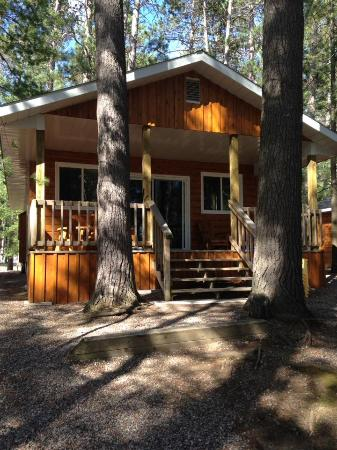 Pine Cliff Resort: This was our cabin.