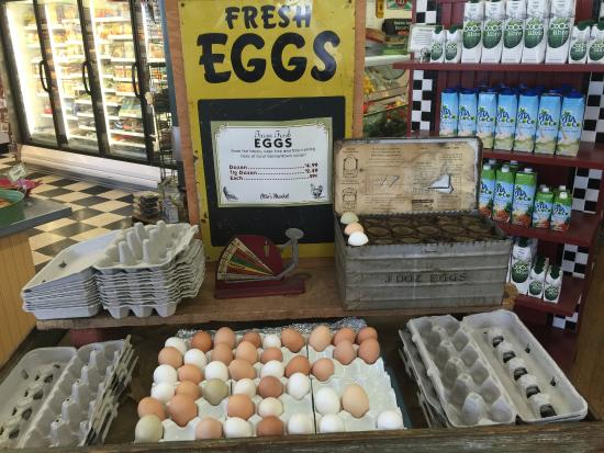 Germantown, Nova York: Eggs!!!
