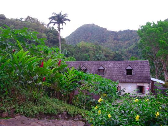 Vieux-Habitants, Guadalupe: Maison du maitre