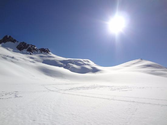 Franz Josef, Selandia Baru: Franz Joseph Glacier