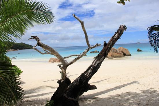 Praslin, Seychellerna: вход на пляж