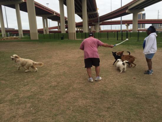 richardson dog park