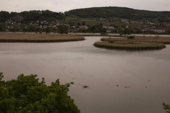 Klingnau照片