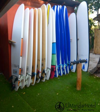 Playa Grande, คอสตาริกา: Surfboard rental on site