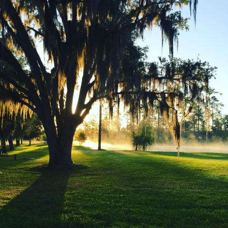 Honey lake plantation resort spa greenville fl for Honey lake plantation