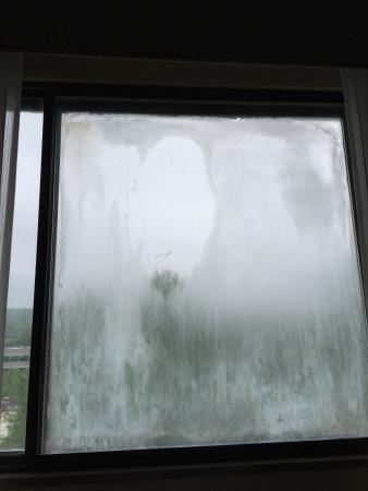 Wayne, Pensylwania: This was the view from my room, it is not condensation, there is something wrong with the glass.