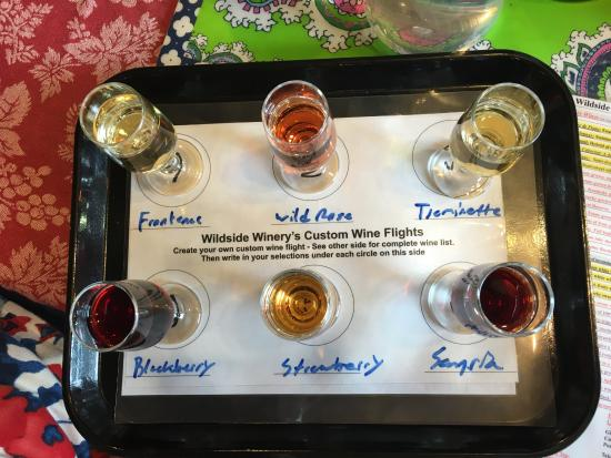 Wildside Winery : My daughter and I shared this tasting and each left with a bottle of wine.