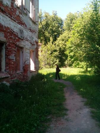 Shelkovo, Russland: Сад