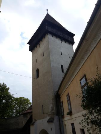 Steingasser Tower