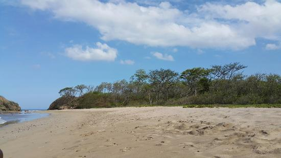 Playa Grande, Costa Rica: 20160515_082415_large.jpg
