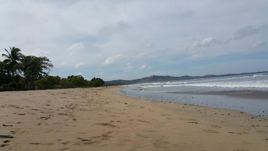 Playa Grande, Costa Rica: 20160515_082408_large.jpg