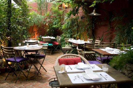 Constantino Cafe : Jardim