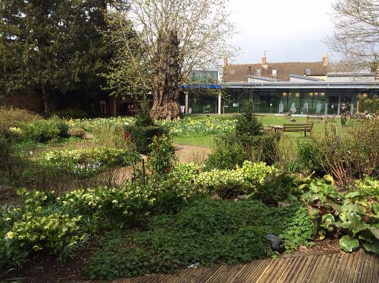 The garden from Cafe deck - Picture of The Oxfordshire Museum ...