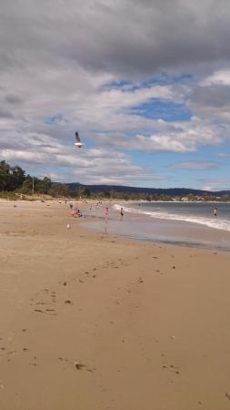 Bellerive, Australia: The beach