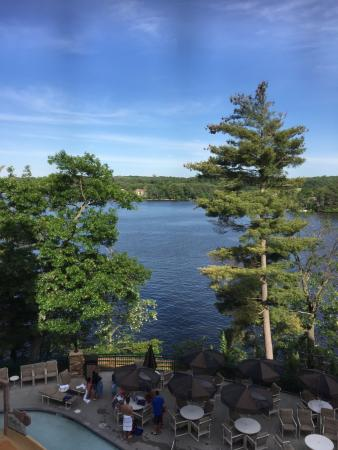 Wilderness on the Lake : View from our room